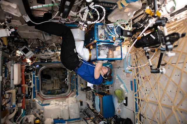 Space Station Science Highlights: Week of    - Exploring Space