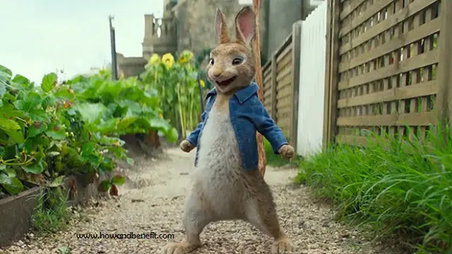Movie Reviews : Review and Synopsis Peter Rabbit (2018)