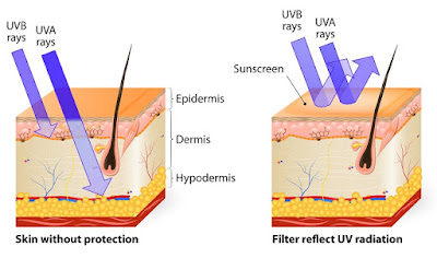 How to get vitamin D and protect the skin from sunlights