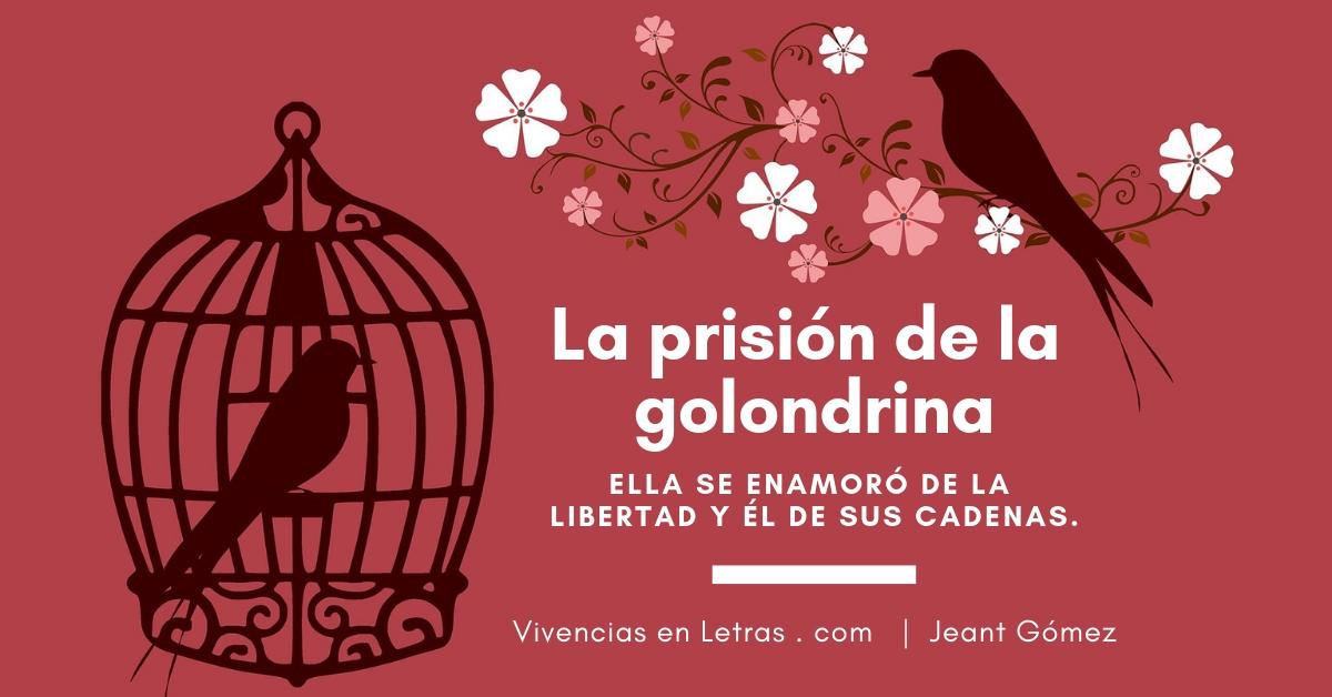 Reflexión La Prisión De La Golondrina Vivencias En Letras