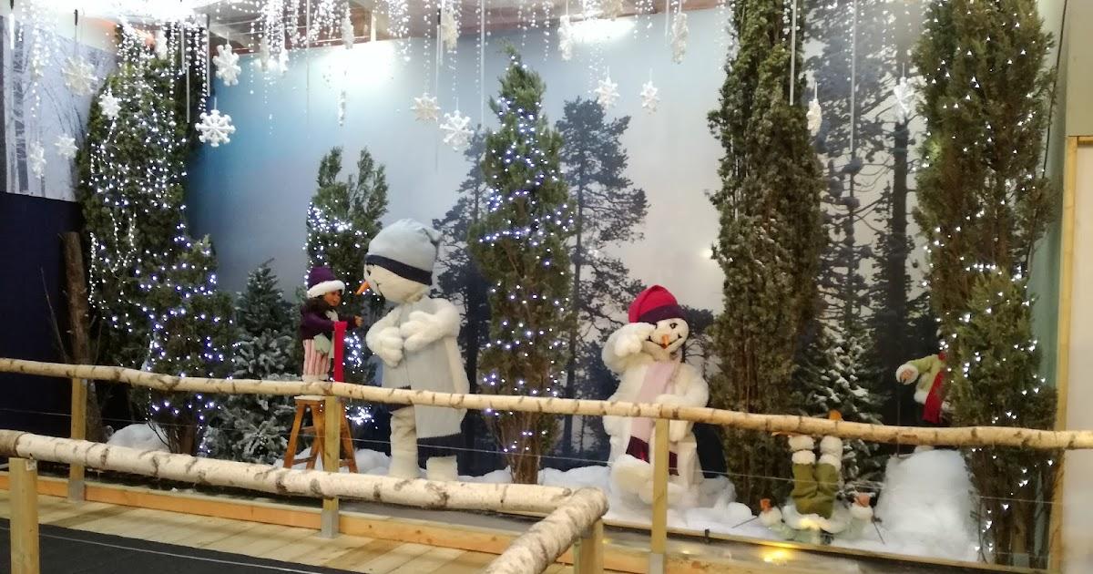Kerstshow bij tuincentrum de driesprong in zoetermeer for Driesprong zoetermeer