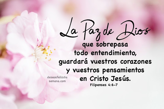versiculo biblico sobre la paz de Dios cita biblica para este buen dia