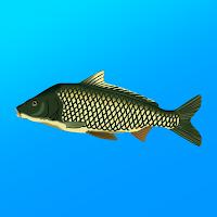 True Fishing Fishing simulator apk mod
