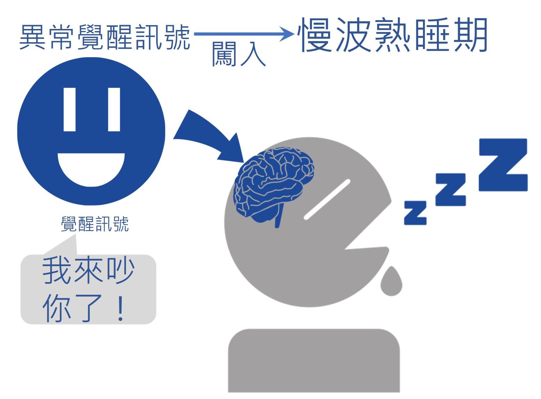 曾秉濤 的 睡覺室: 愛麗絲夢遊仙境,是夢?是遊?還是單純腦內的異常?