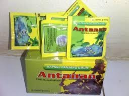 Capsule Antanan