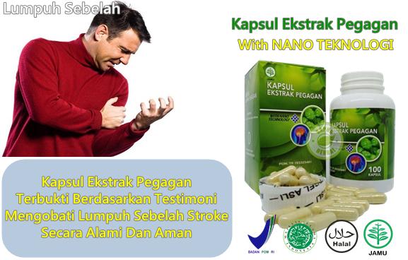 Obat Lumpuh Sebelah Herbal
