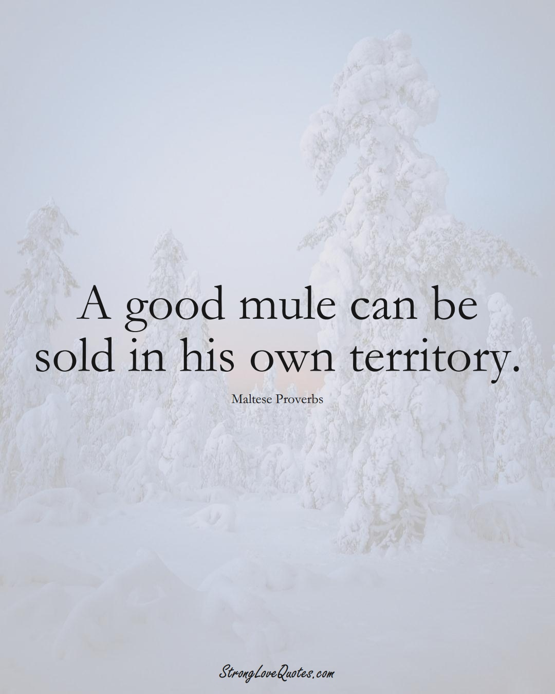 A good mule can be sold in his own territory. (Maltese Sayings);  #EuropeanSayings