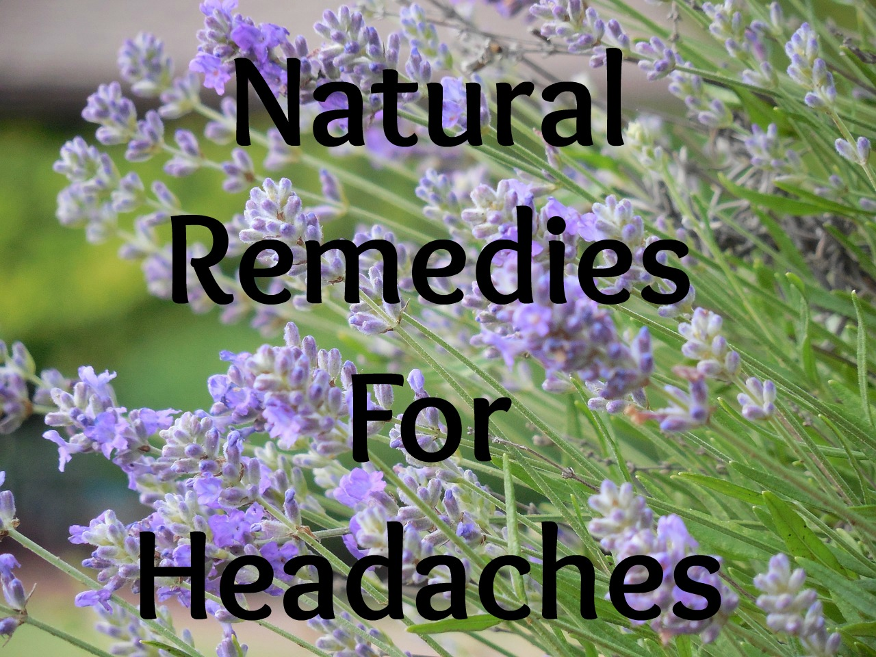 healthy body happy spirit natural remedies for headaches. Black Bedroom Furniture Sets. Home Design Ideas