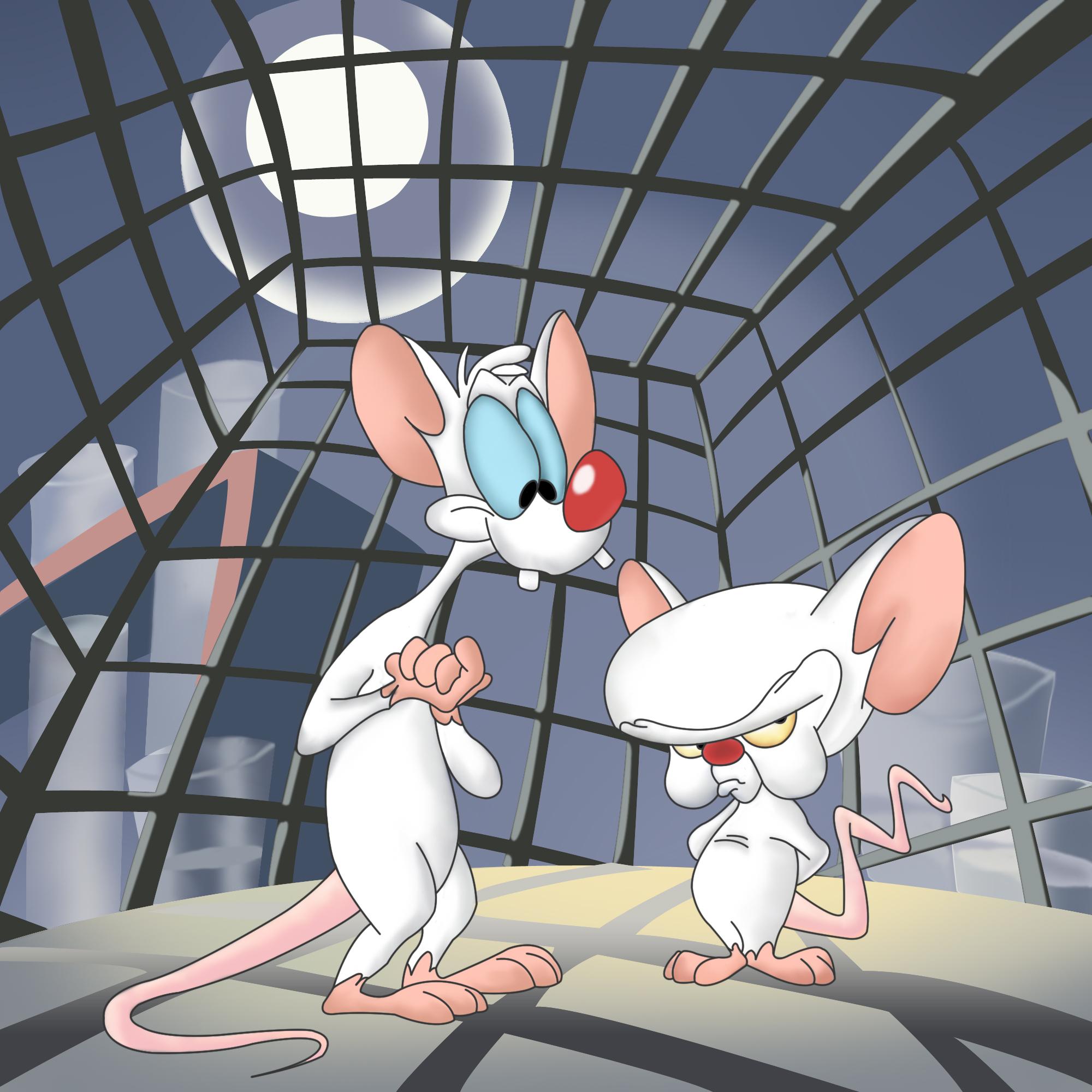 Ver Pinky y Cerebro