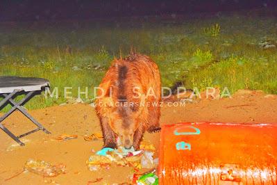 Deosai Plains Skardu ,Home Of Brown Bears,Gilgit Baltistan