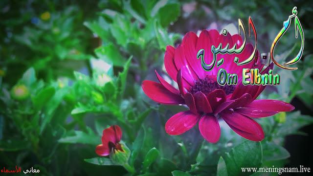 معنى اسم ام البنبن وصفات حاملة هذا الإسم Om Elbninb, bnin, بنين,