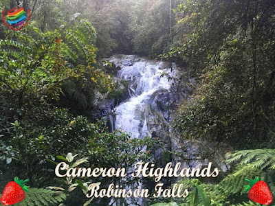 Robinson Falls, Cameron Highlands