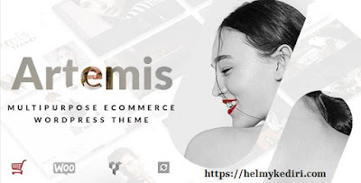 3. Artemis