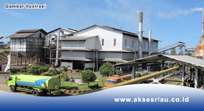 Lowongan Perusahaan Pabrik Kelapa Sawit Pekanbaru Agustus 2017
