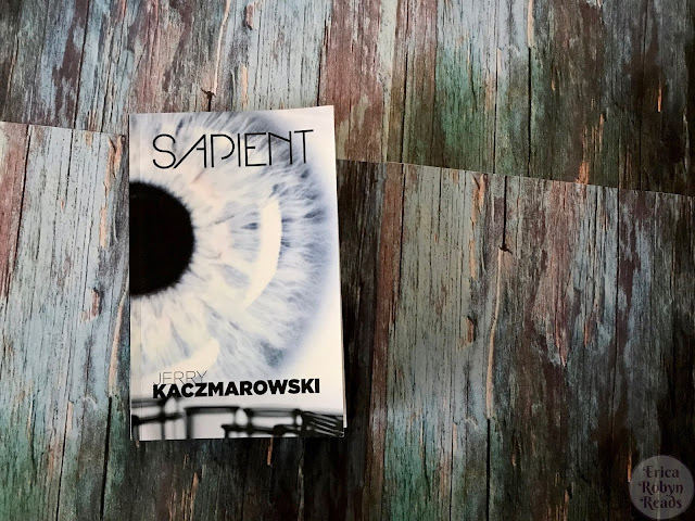 Book Review of Sapient by Jerry Kaczmarowski