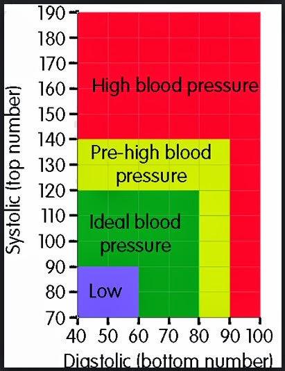 BP Chart (Blood Pressure Chart)