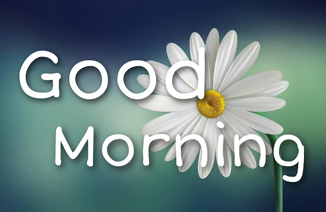 share chat good morning images