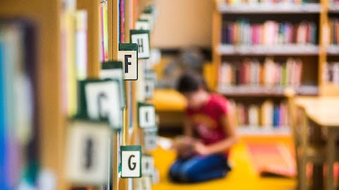 A Föld védelmére hívják fel a figyelmet a könyvtári napokon Nógrád megyében