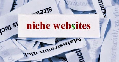 Make-Money-through-Niche-Websites