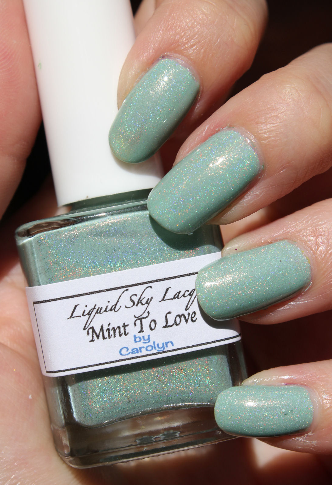 http://lacquediction.blogspot.de/2014/11/liquid-sky-lacquer-mint-to-love.html