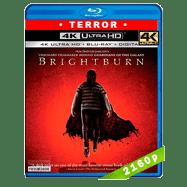 Brightburn: Hijo de la oscuridad (2019) Ultra HD BDRip 2160p Latino