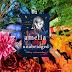 Amelia Unabridged by Ashley Schumacher | Blog Tour