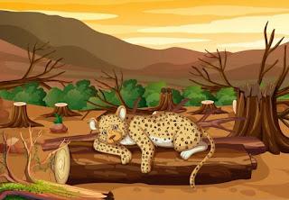 Hubungan Antara Hutan Dan Pemanasan Global