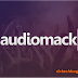 Audiomack Platinum v4.9.1  APK – Download