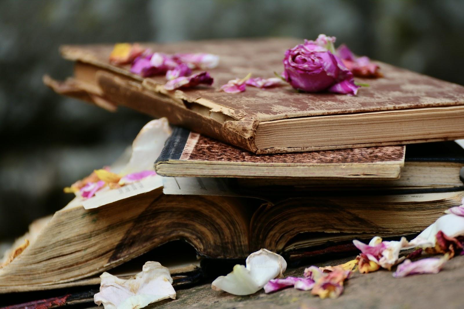 7 najważniejszych około literackich wydarzeń tygodnia. Booknet (20)