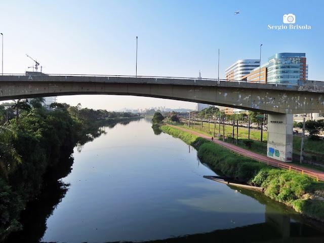 Vista de parte do Rio Pinheiros - Zona Oeste - São Paulo