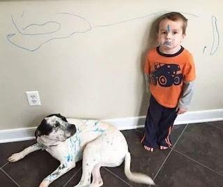 Niño pinta perro y disimula