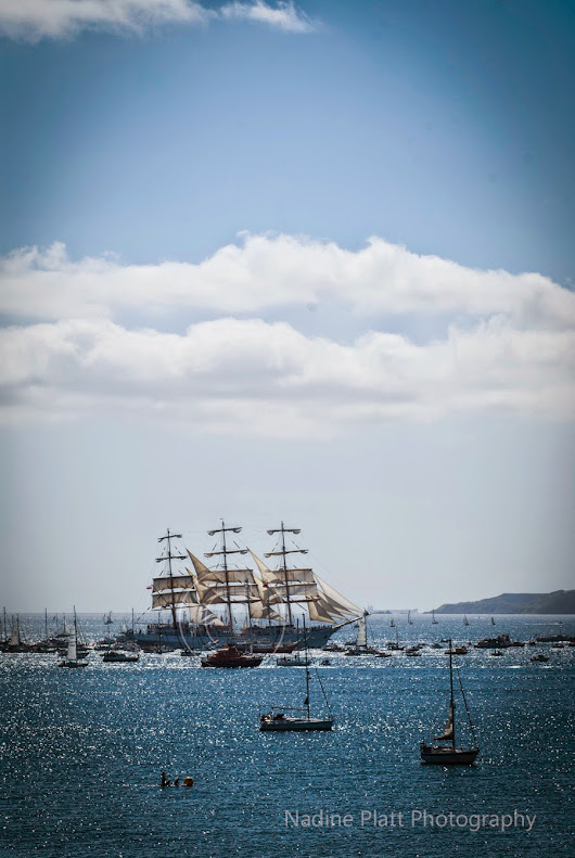 Tall Ships and Yachts