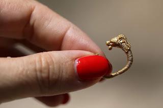 بالصور.. اكتشاف قرط ذهبي في أرض الأقصى يرجع تاريخه لألفي عام