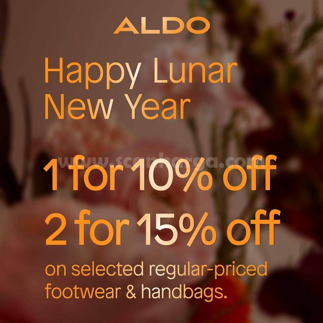 ALDO SHOES LUNAR NEW YEAR! Promo Buy 1 Get 10% Off and Buy 2 Get 15% Off