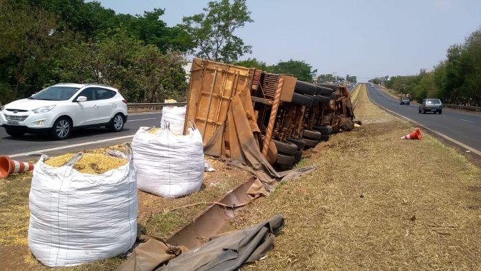 Caminhão tomba e espalha carga de milho em rodovia
