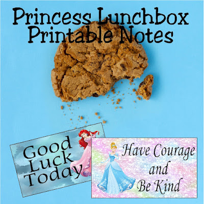 Wish your little princess a good day at school with these printable lunchbox notes.  These notes will give your little student a smile and a wish during the middle of the day at lunch time.