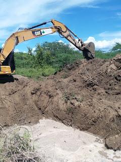 Agricultura supervisa en la Regional Sur nuevas siembras