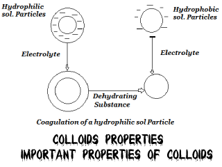 Colloids Properties