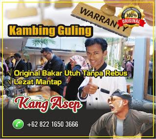 Spesialis Kambing Guling Di Bandung | 082216503666,Spesialis Kambing Guling Di Bandung,spesialis kambing guling di bandung,kambing guling di bandung,kambing guling,