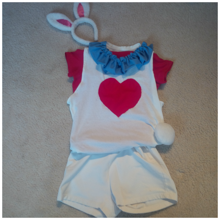 alice in wonderland running costume