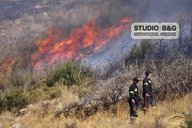 Πυρκαγιά στη ορεινή Αργολίδα το βράδυ του Σαββάτου