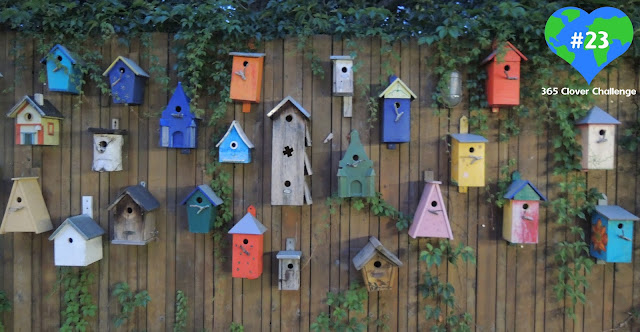 Sustainability and smiling, sustainable living, sustainability, climate action, bird houses