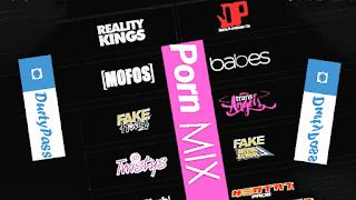 Mix Premium XXX Passwords Accounts of Pornhub & Playboy Free