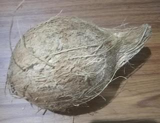 Fresh coconut from mysore