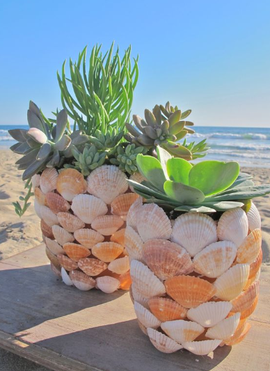 MAGICAL DIY CRAFTS WITH SEASHELLS