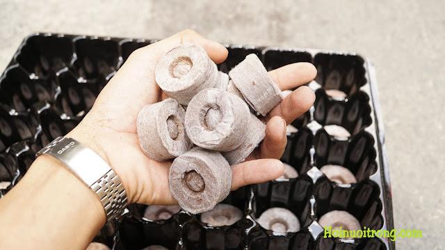 Viên nén xơ dừa này là lựa chọn hoàn hảo nhất đi cùng khay ươm hạt