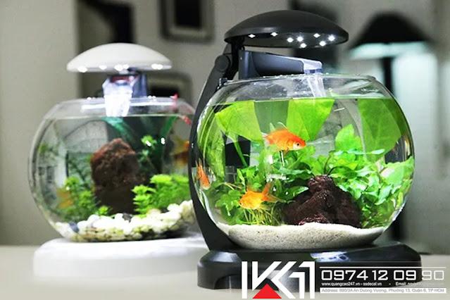 Bể cá mini để bàn văn phòng giá rẻ