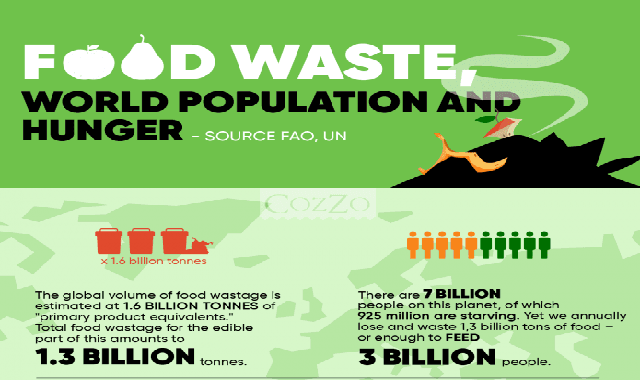 Food Waste, World Population, and Hunger #infographic