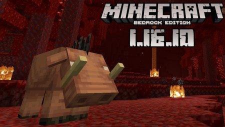 Minecraft - 1.16.10 (Bedrock)