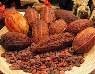 cara fermentasi biji kakao,cara membuat bubuk coklat manis,cara mengolah biji coklat mentah,cara mengolah kakao menjadi coklat batangan,pengolahan kakao menjadi coklat pdf,
